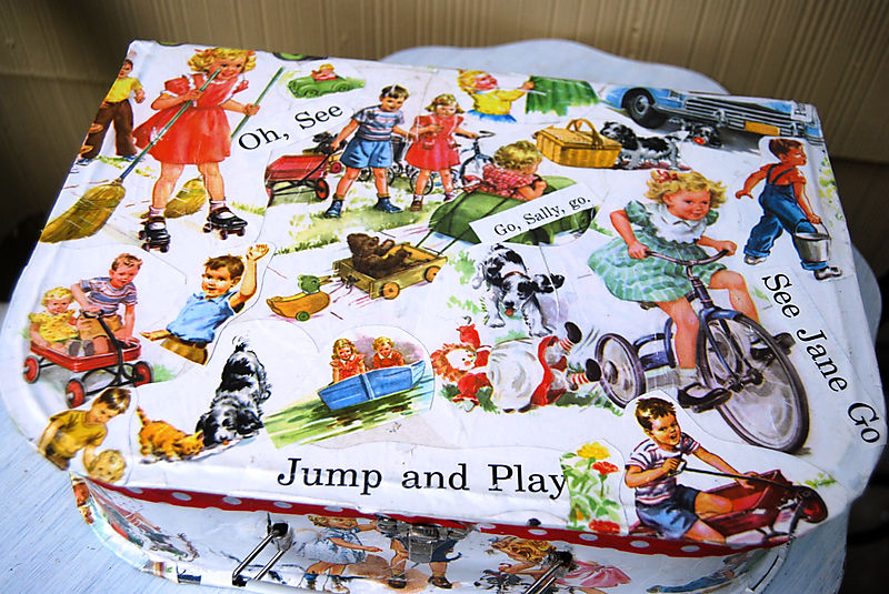 Dick and jane suitcase