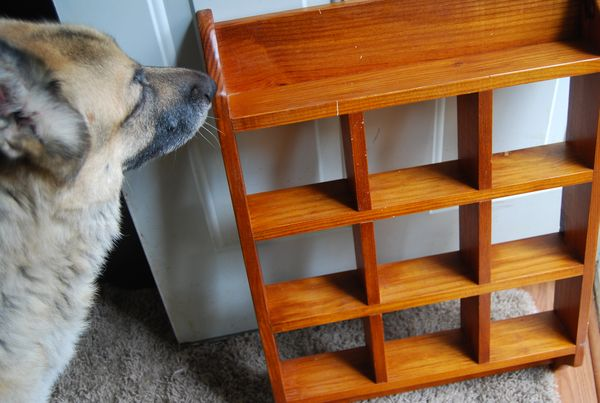 Thrifty Miss Priss Pottery Barn Cubby Storage Knock Off