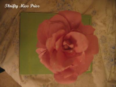 Pink_rose_1