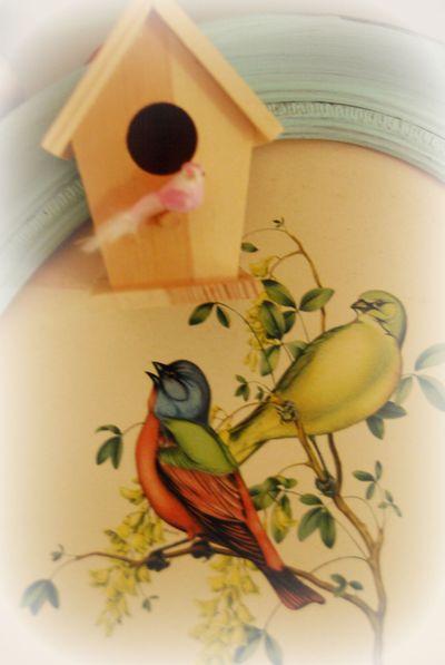 Bird_edit_2