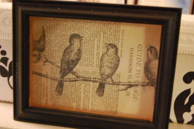 Birds_012