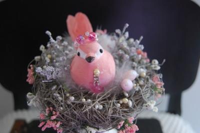 Bird_nests_015